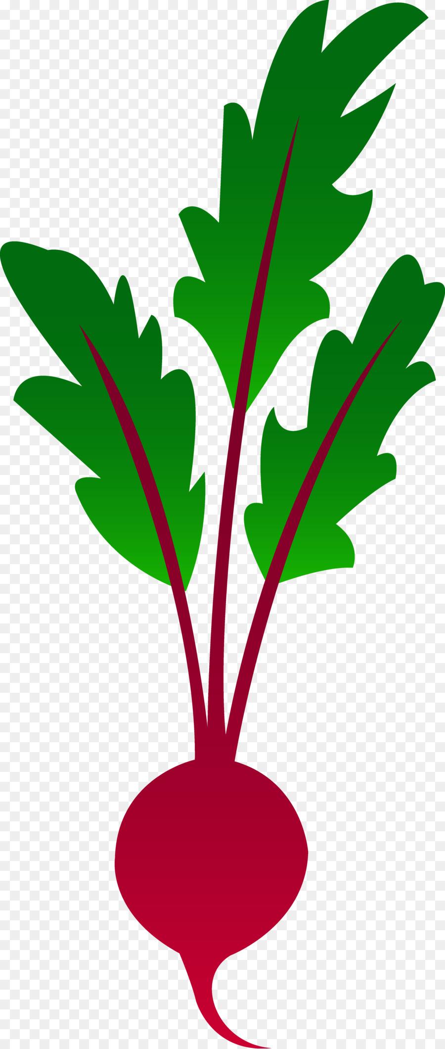 beetroot vegetable clip art vegetable garden clipart png download rh kisspng com  vegetable garden clipart powerpoint