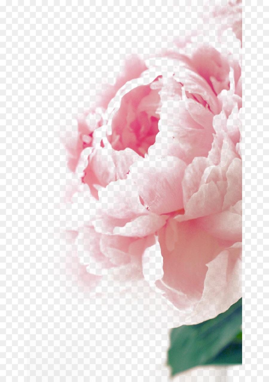 Birthday flower bouquet greeting card wish color peony states png birthday flower bouquet greeting card wish color peony states izmirmasajfo