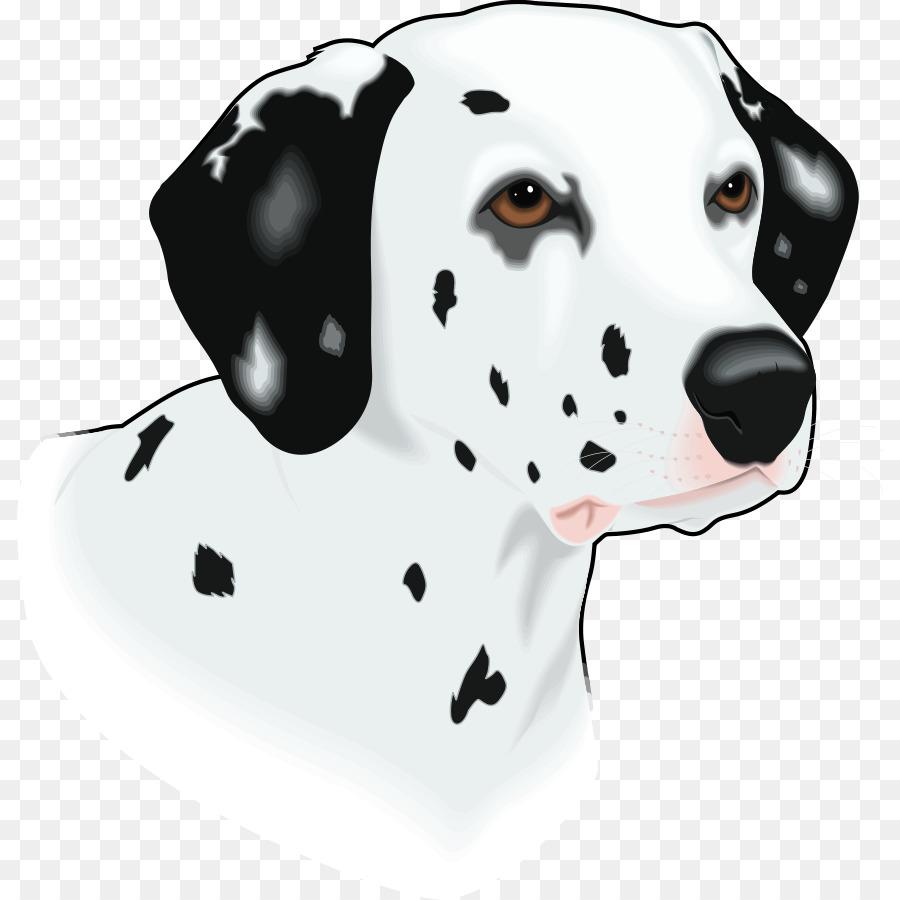 Dog Paw png download - 866*900 - Free Transparent Dalmatian