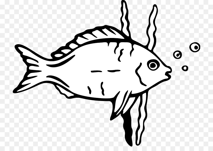 Cartoon drawing fish clip art cartoon fish