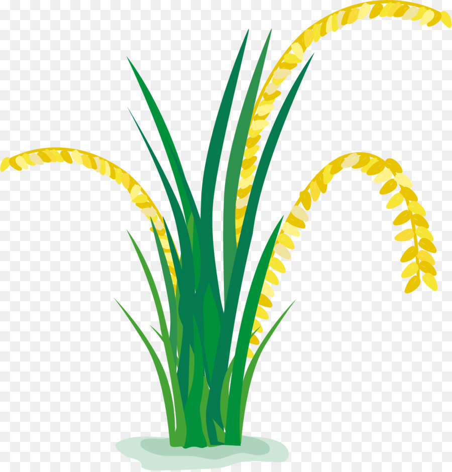rice paddy field cartoon rice in a cartoon paddy field wheat clipart png wheat clip art black and white