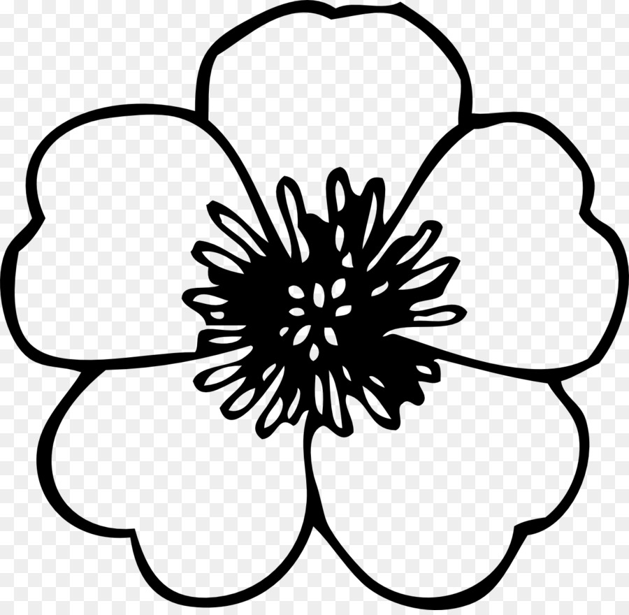 Flower Black And White Drawing Clip Art Spring Cliparts Bw Png