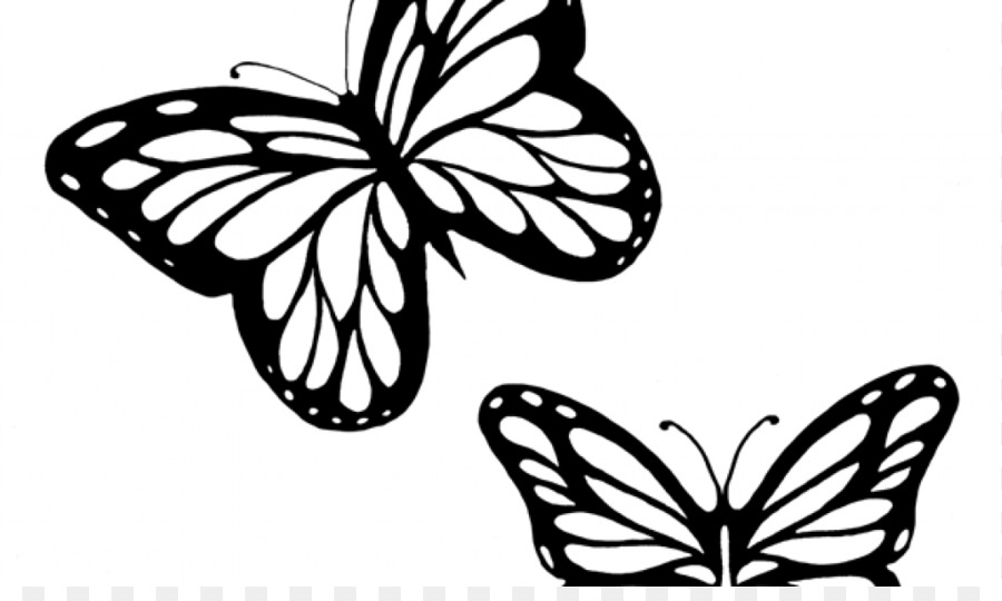 Monarch butterfly outline drawing clip art butterflies black and white outline