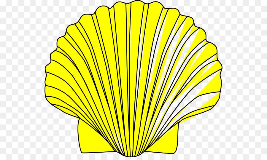 clam seashell clip art shells clipart png download 600 531 rh kisspng com clipart shells starfish shells clipart free