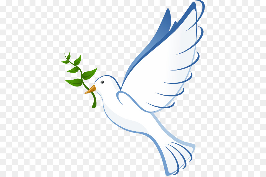Columbidae Bible Christianity Clip Art Dove Vector Png Download