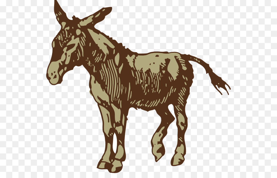 t shirt sticker donkey jackass illustration mule cliparts png rh kisspng com Donkey Clip Art Funny Donkey Clip Art