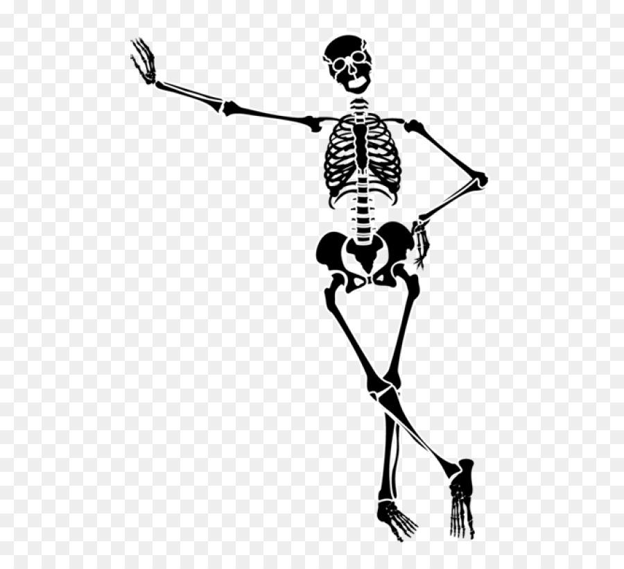 human skeleton skeleton at the 2018 winter olympics men clip art rh kisspng com skeleton clip art for kids skeleton clip art free printable
