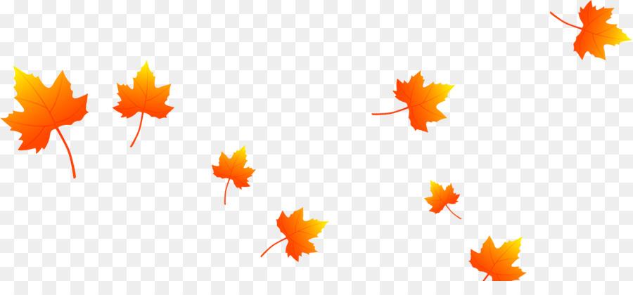 Hoja descargar arce hermosa de las hojas que caen png - Descargar autumn leaves ...