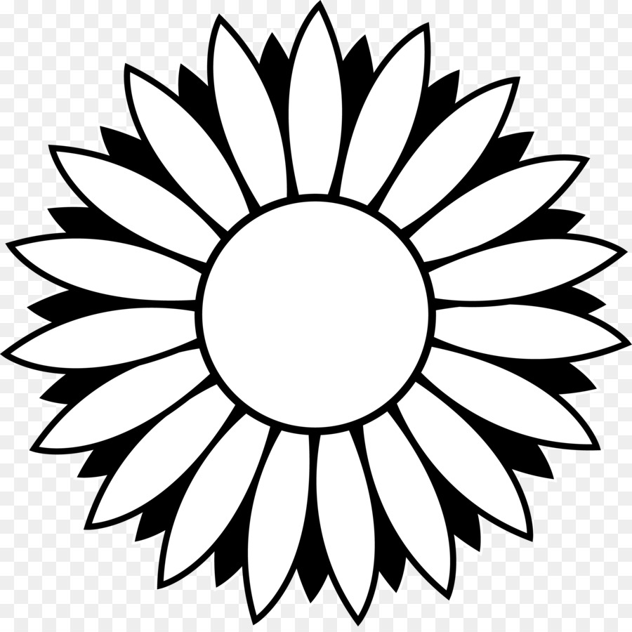 Black And White Common Sunflower Clip Art Flower Outline Images