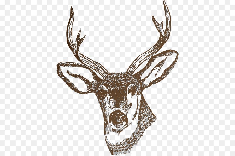 Deer realistic. Reindeer cartoon png download