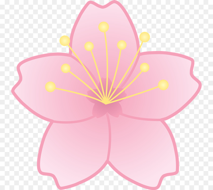 Cherry Blossom Flower Clip Art