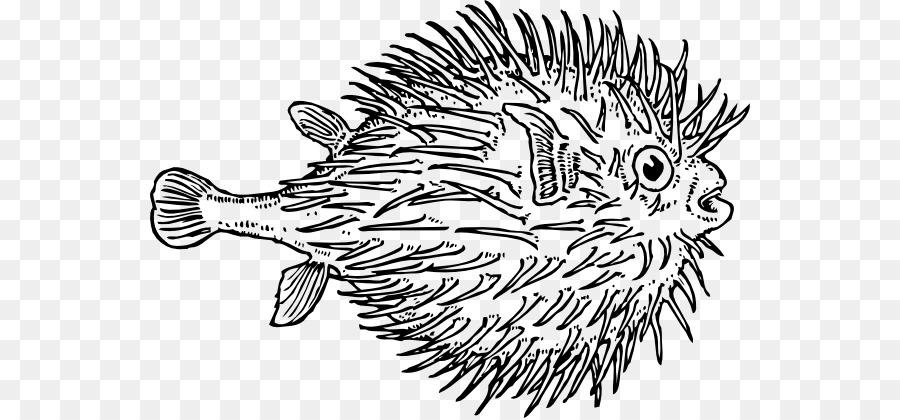 Pufferfish Coloring book Shark Clip art - Blowfish Cliparts png ...
