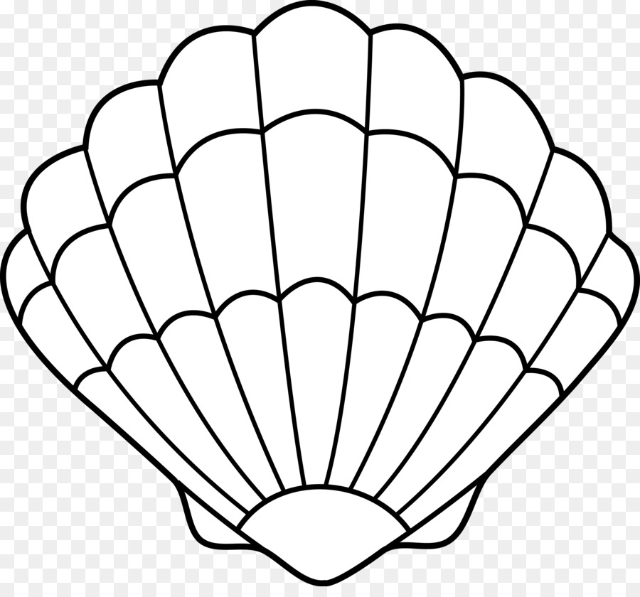 clam seashell drawing clip art ariel outline cliparts png download rh kisspng com seashells clipart png seashells clipart png
