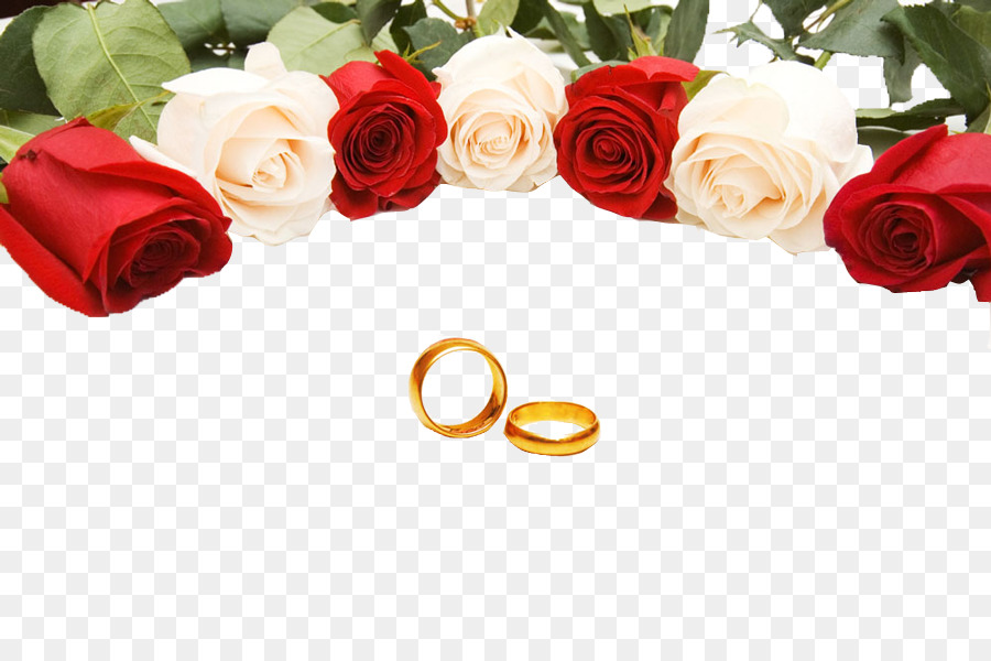Wedding ring Rose Stock photography Wedding Rings png download