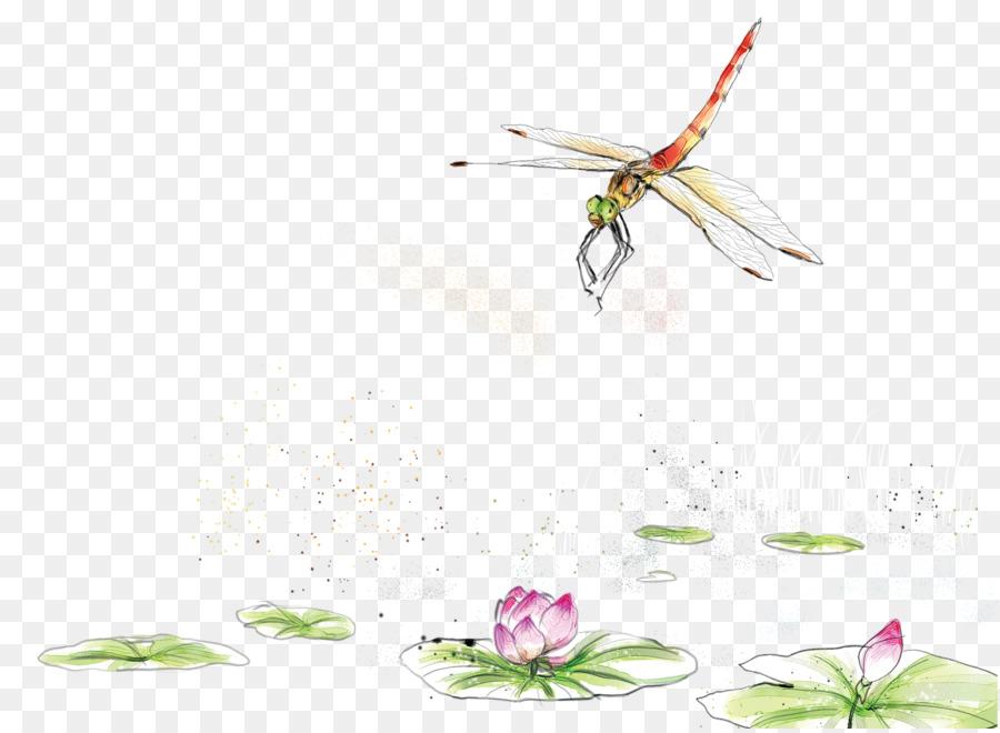 garden plaques dragonflies distinction dragonfly colourful colourfulmetaldragonflies art wall product decor category metal mondus