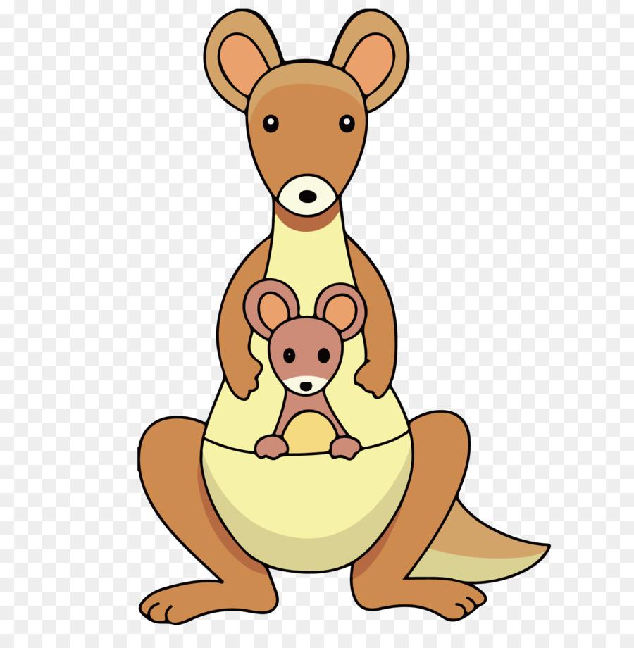 kangaroo free download