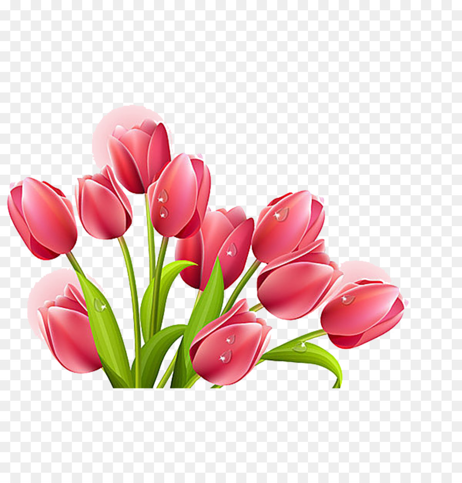 Tulip Flower Bouquet Clip Art Tulip Png Download 15361600