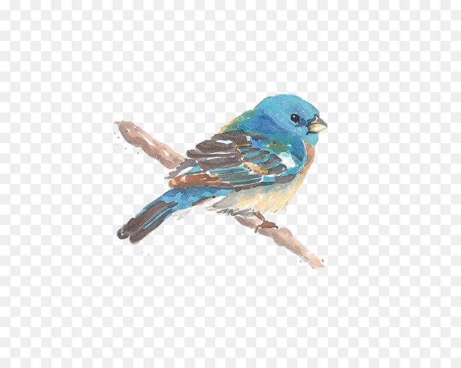 Pájaro de la Acuarela Dibujo - Aves Formatos De Archivo De Imagen ...