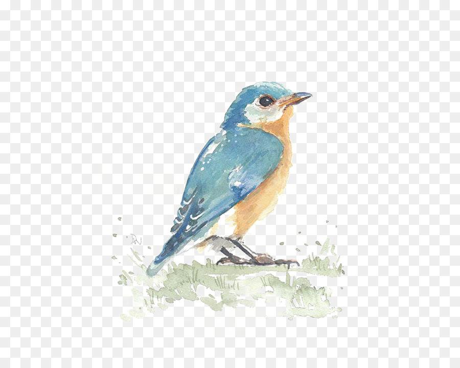 El colibrí de la Acuarela de las artes Visuales - Aves Formatos De ...
