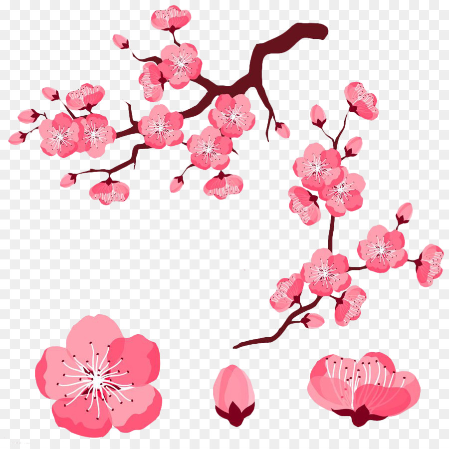 Cherry Blossom Adobe Illustrator Clip Art Pink Cartoon Cute Peach