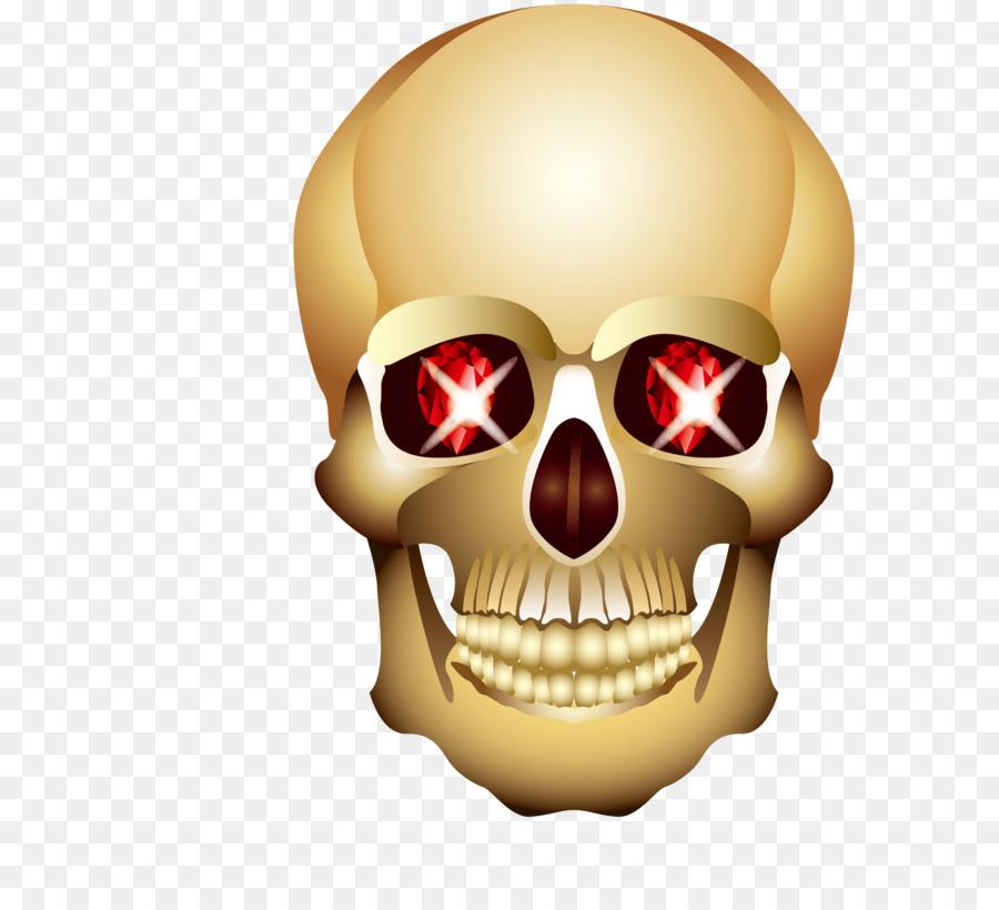 Head Eye Skull - Glowing eyes of the cranial skeleton head png ...