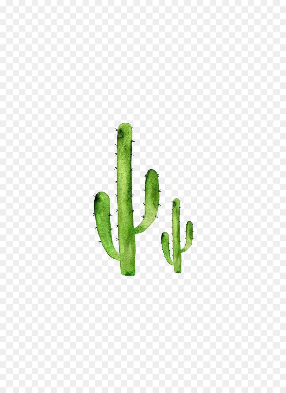 cactaceae watercolor painting watercolor cactus png