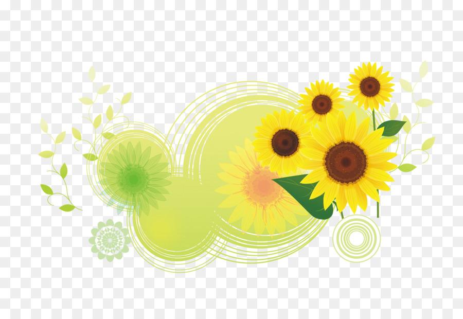 Download Common Sunflower Illustration