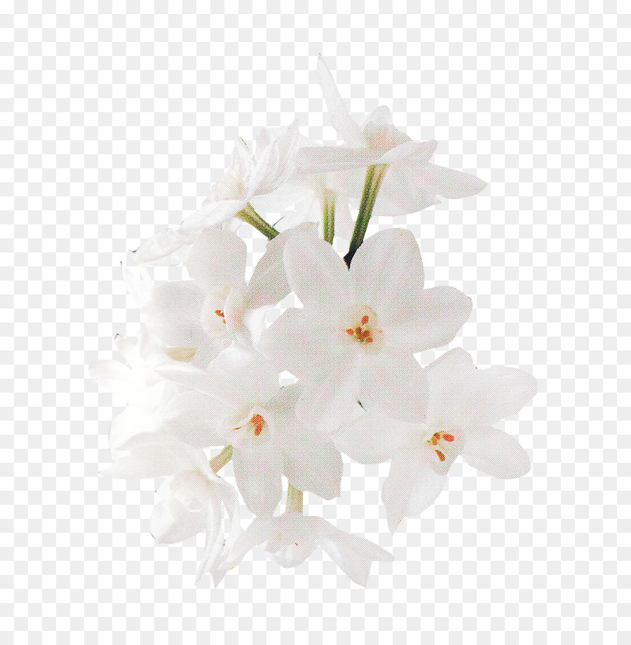 Floral design white flower bouquet of flowers vector material floral design white flower bouquet of flowers vector materialwhite flowers mightylinksfo