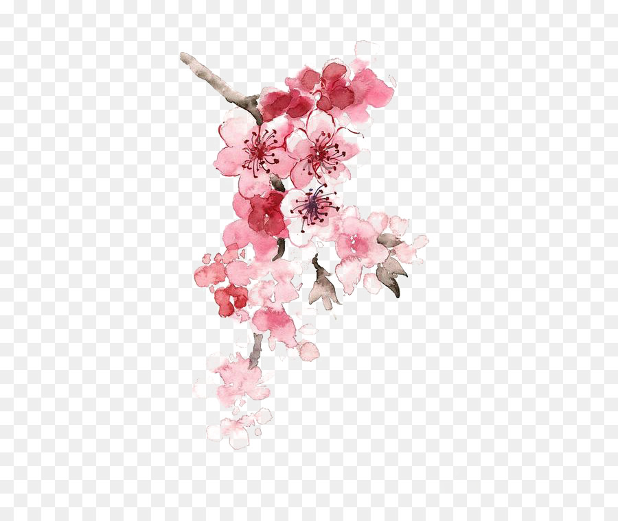 Cherry Blossom Watercolor Painting Chinese Painting Ink