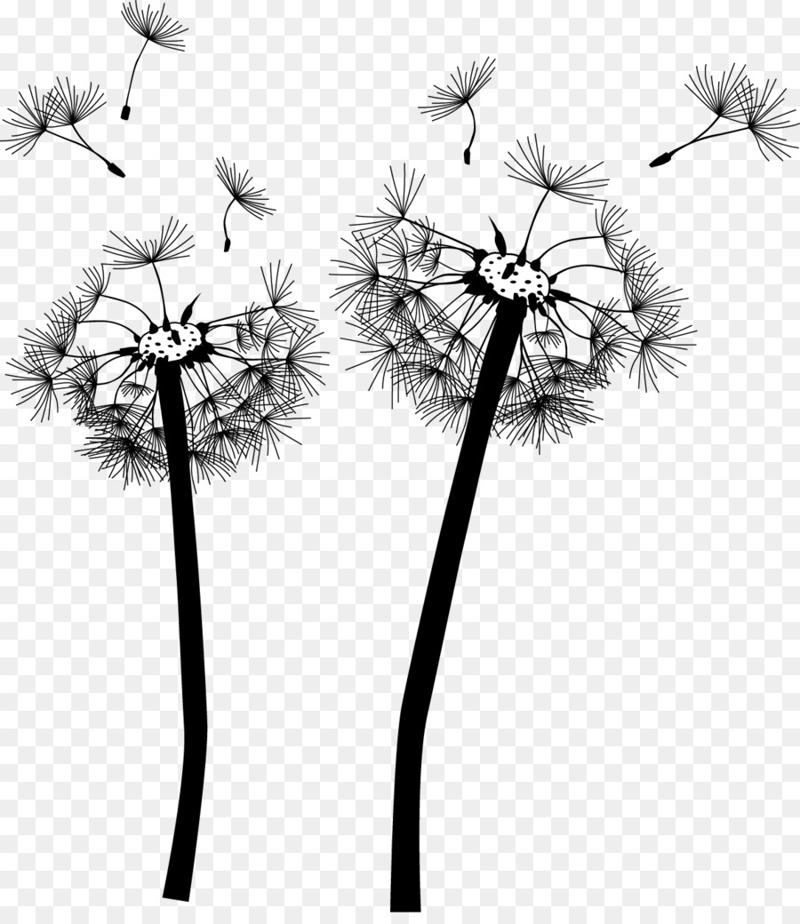 Dandelion wall decal mural computer wallpaper plant png