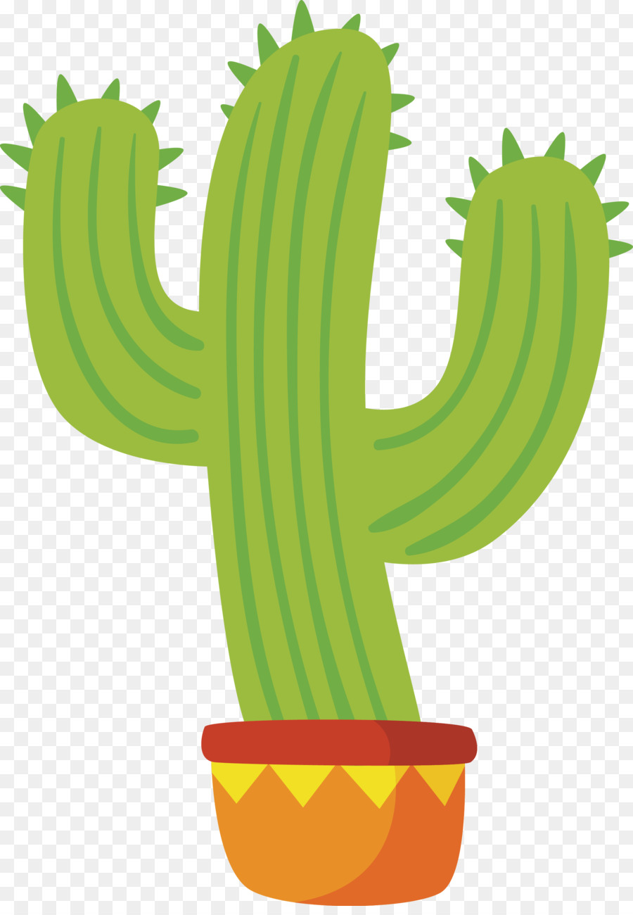 Mexican Cuisine Euclidean Vector Vector Cartoon Cactus