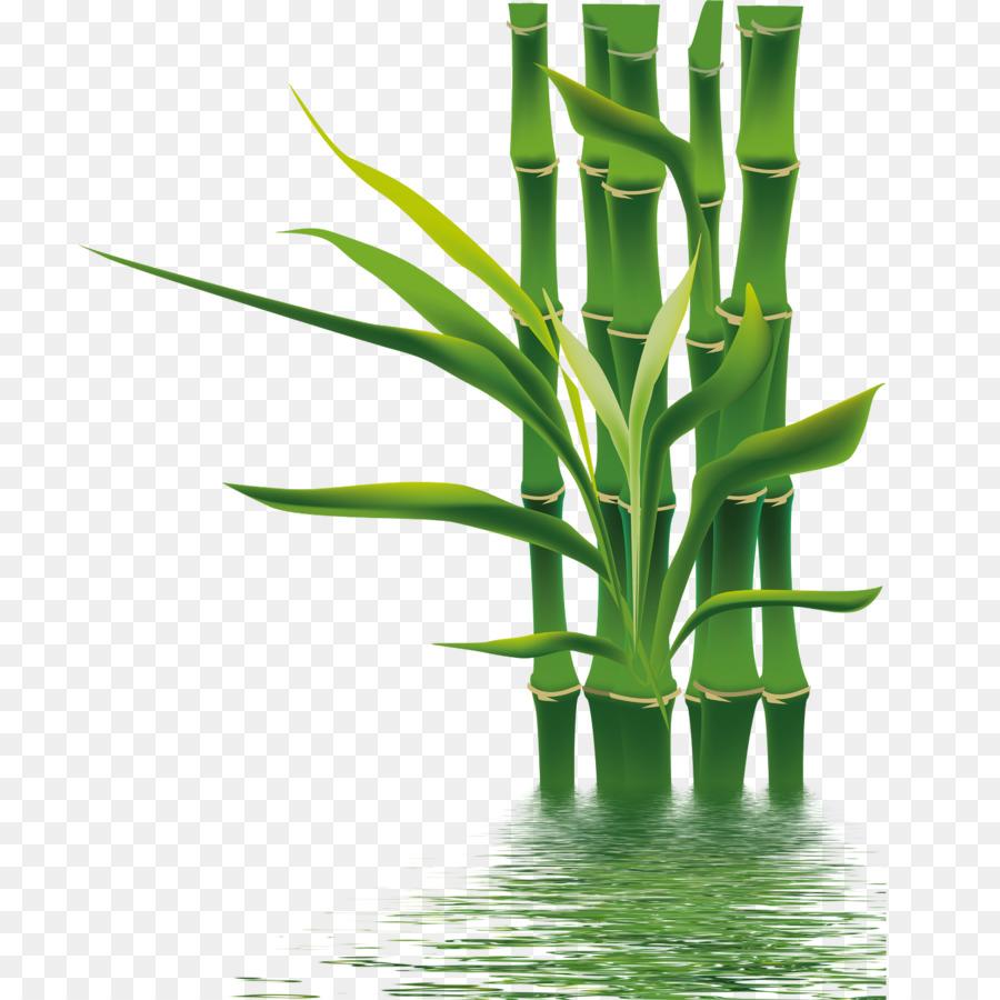 Bamboo If We Bamboe Wallpaper Bamboo Png Download