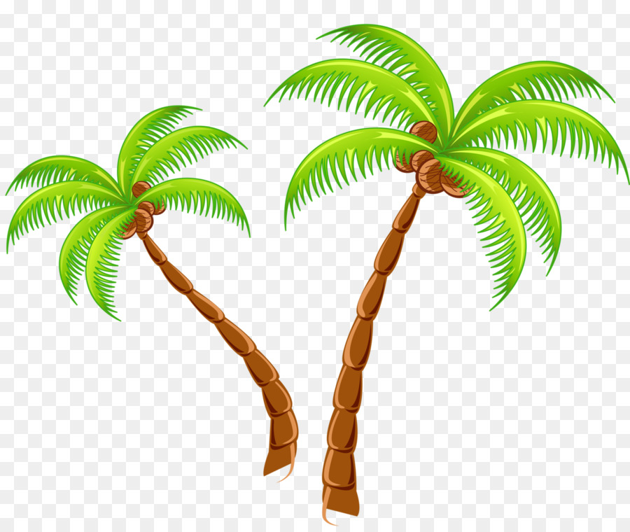 Tropical Islands Resort Clip Art   Coconut Tree