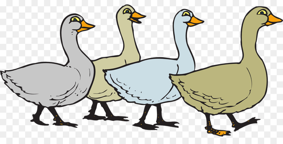 domestic goose bird clip art ducks png download 1280 640 free rh kisspng com free goose clipart geese clipart png
