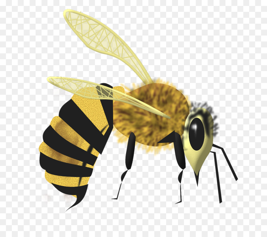 Madu Lebah Kartun Kartun Lebah Unduh Terbang Lebah Madu