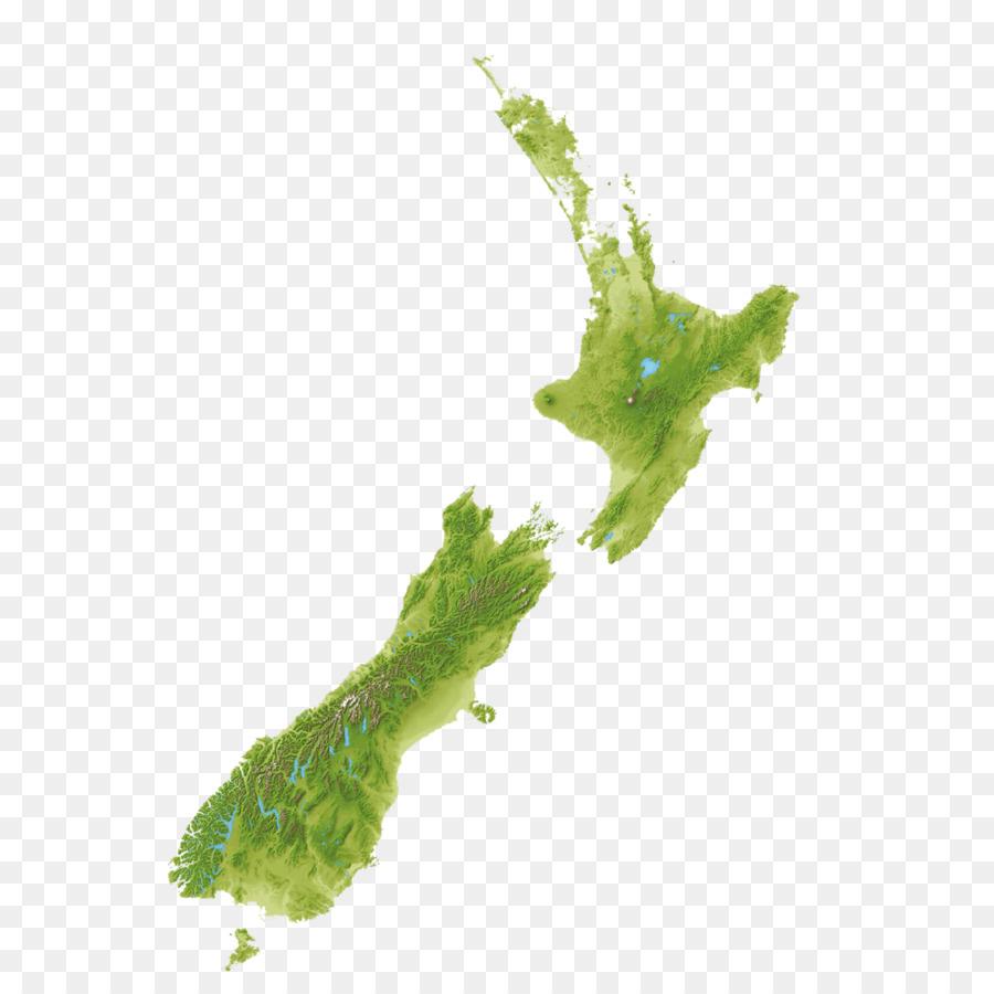 Auckland Kaikoura Orokonui Ecosanctuary Wellington Lake Rotopiko