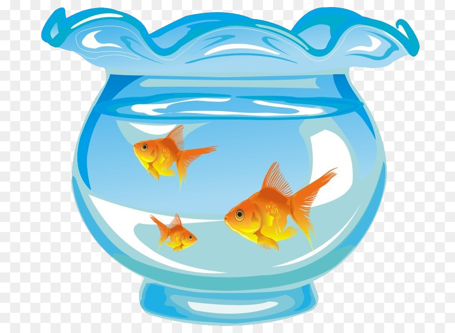 Goldfish Aquarium Aquaristik Cute Cartoon Hand Bemalt Blau Und