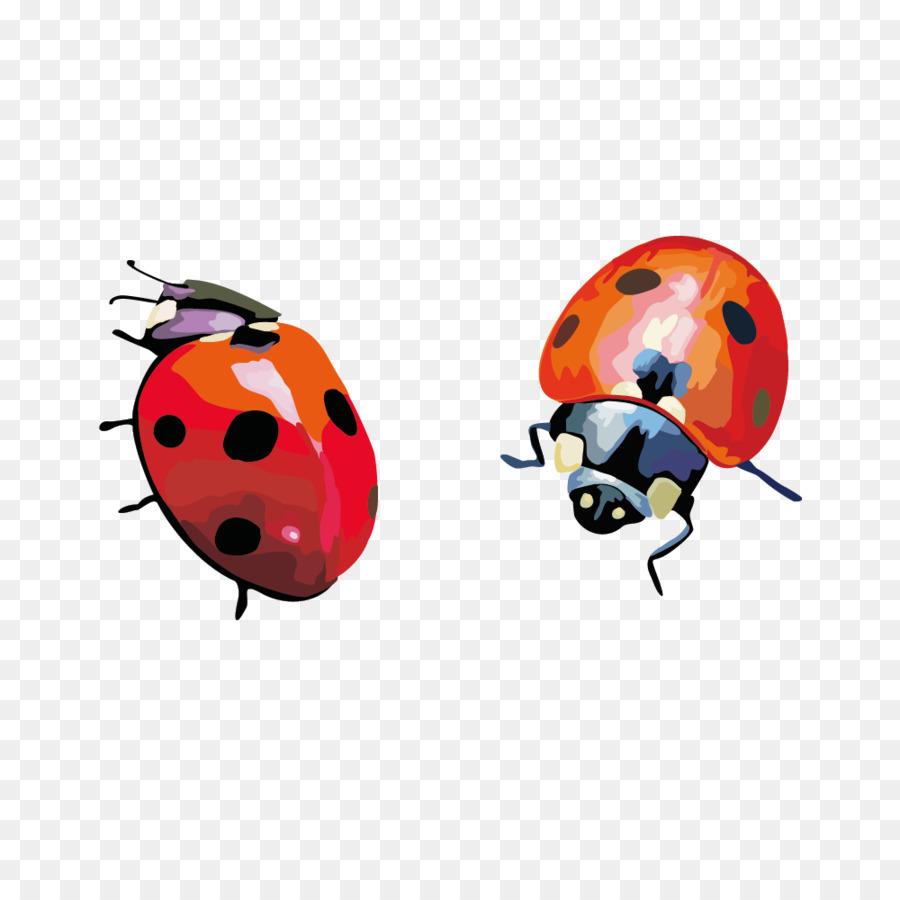 Coccinella Septempunctata Böcek Küçük Resim El Boyaması Uğur