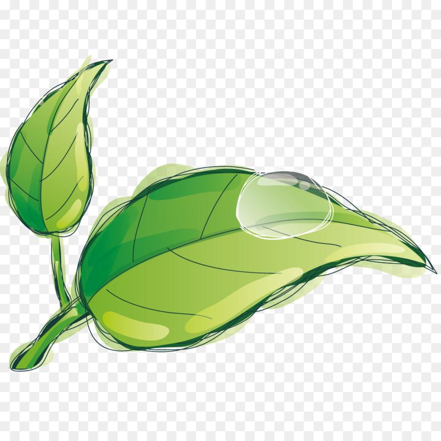 La Caída De Las Hojas - Gotas de agua sobre las hojas Formatos De ...