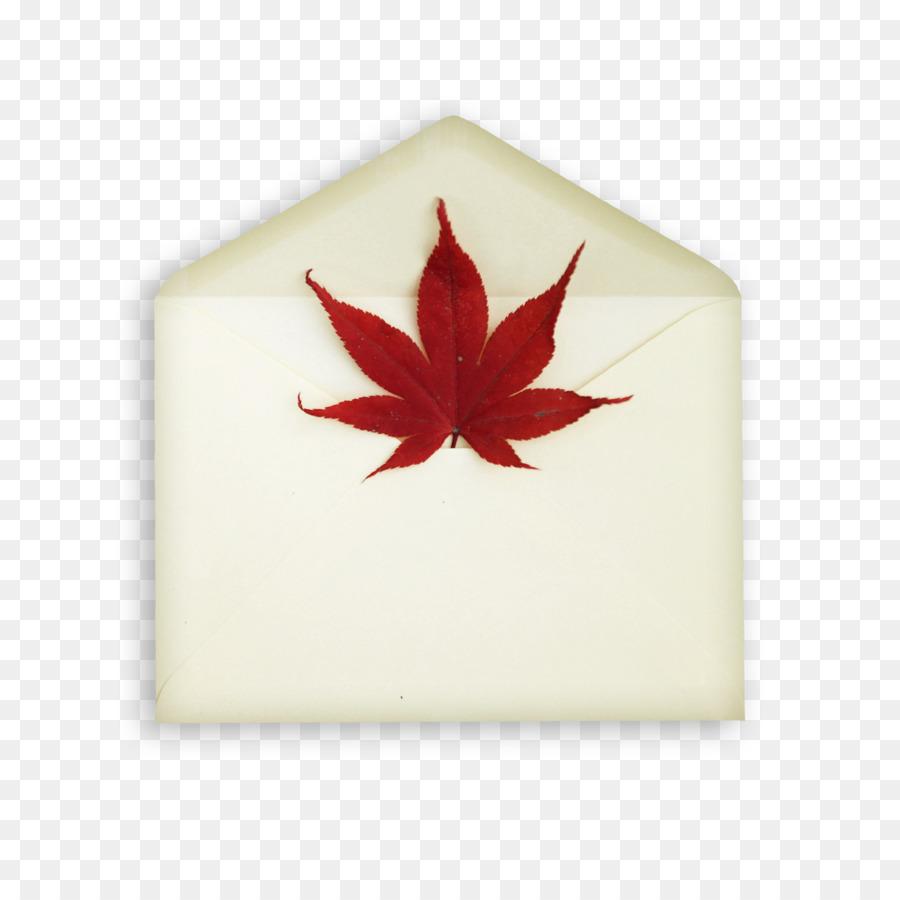 Wedding invitation Envelope Postcard Maple leaf - Maple envelope png ...