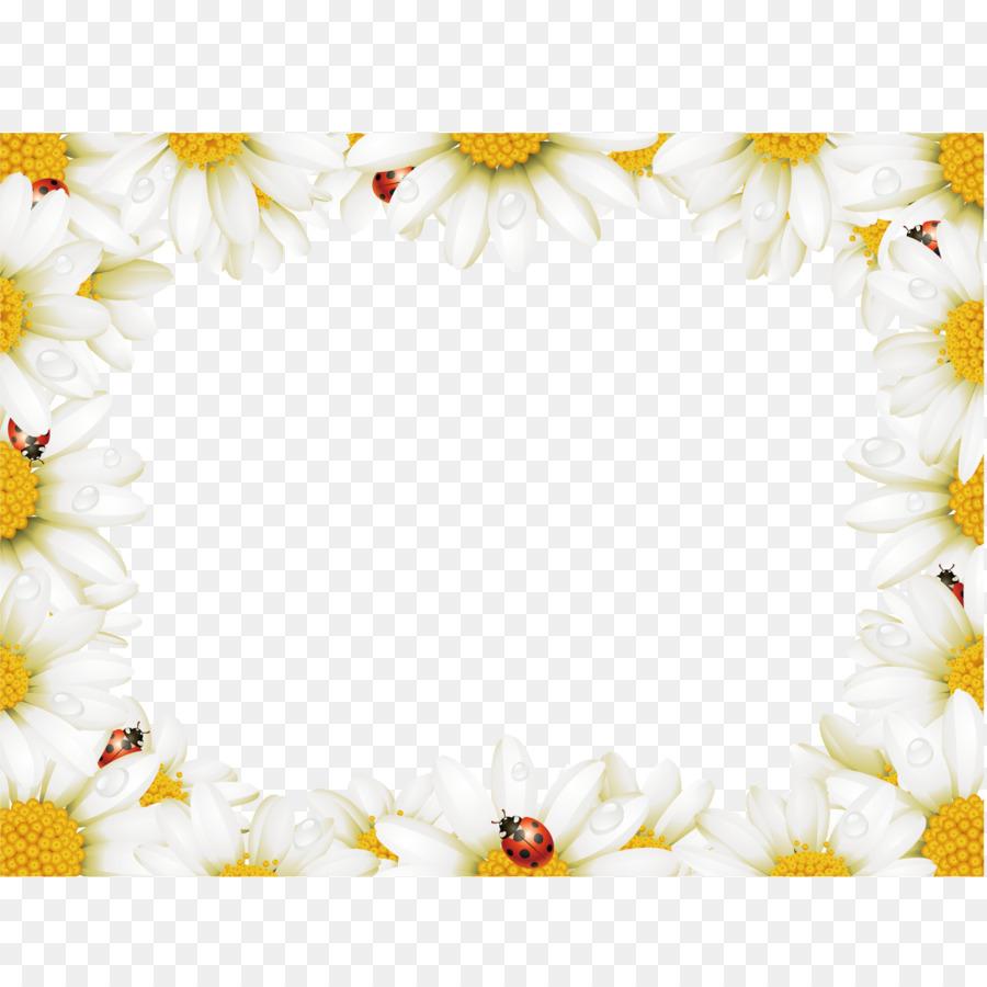 Flower chamomile stock photography illustration square flower chamomile stock photography illustration square chrysanthemum video border izmirmasajfo