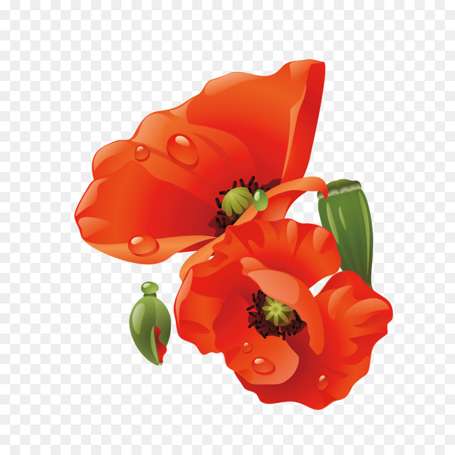 Poppy Paper Flower Flowers Bouquet Png Download 15001500 Free