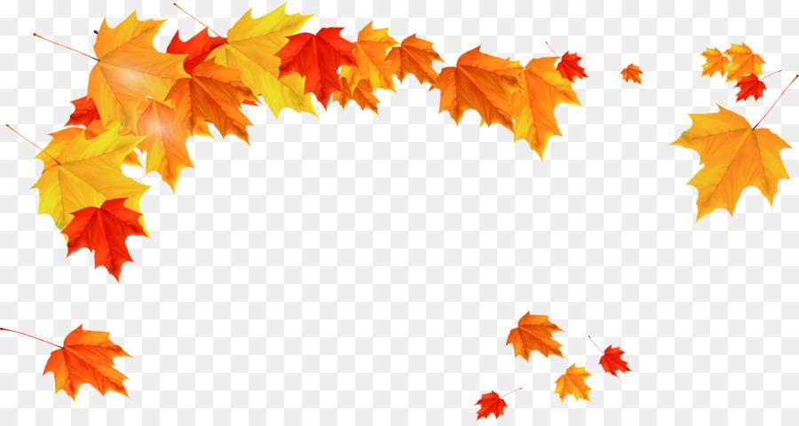 Maple Leaf Autumn Beautiful Golden Maple Leaves Falling