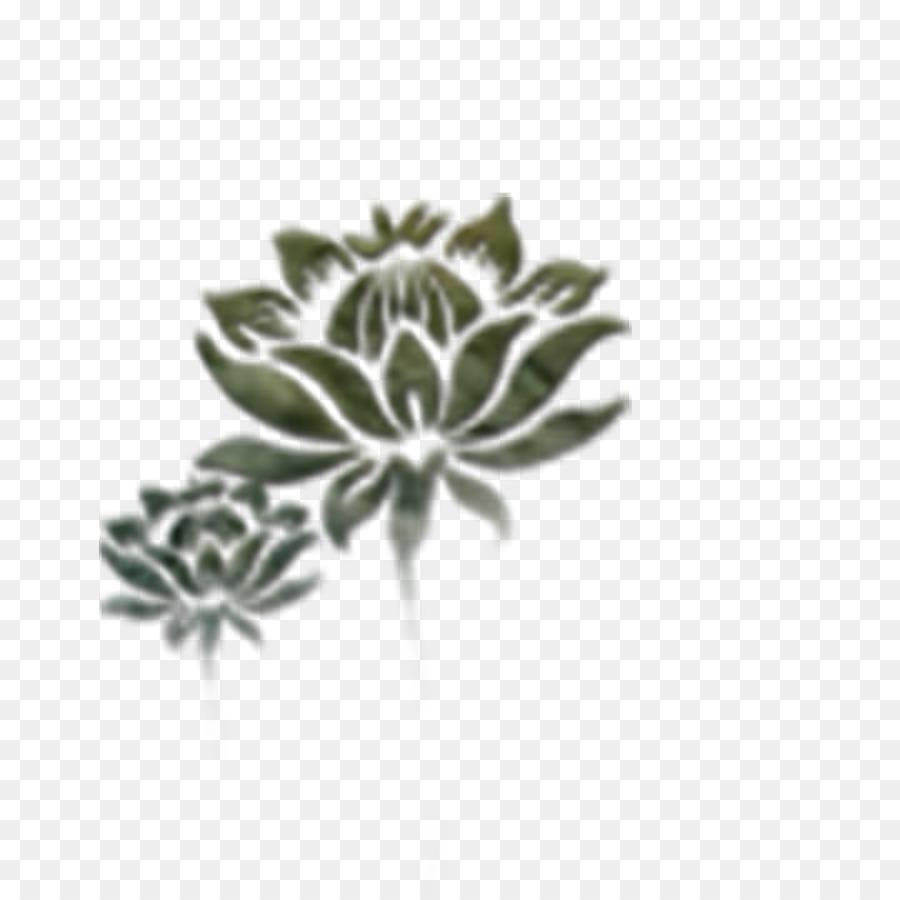Nelumbo Nucifera Google Images Black Lotus Png Download 1000