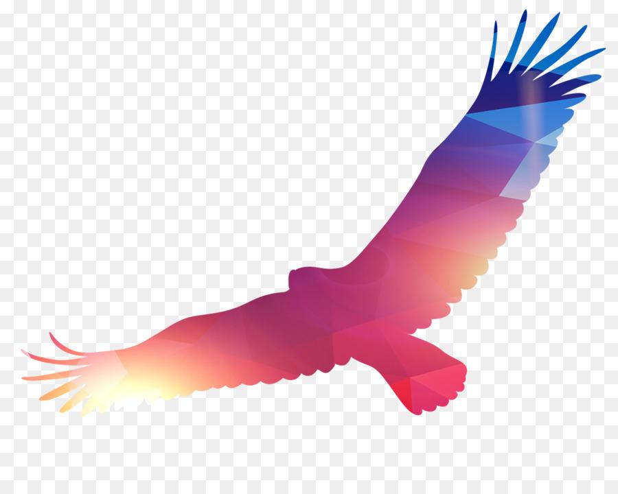 Eagle Bird - Eagle PNG png download - 1832*1462 - Free Transparent ...