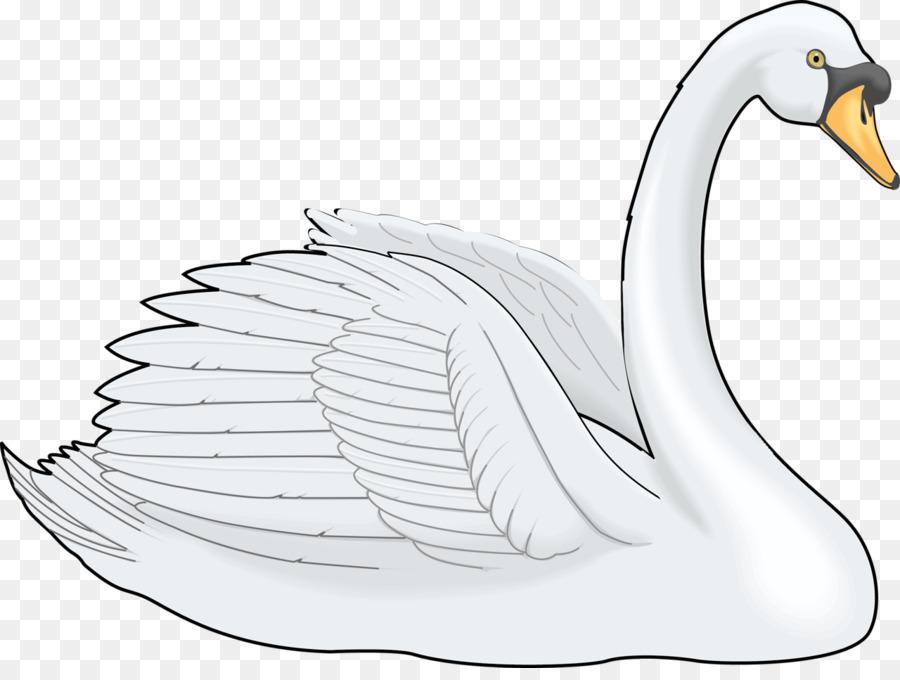Cygnini Küçük Resim Boyama El Boyalı Karikatür Beyaz Kuğu Resim