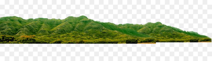 vegetation landscaping land lot grasses ecosystem green mountains