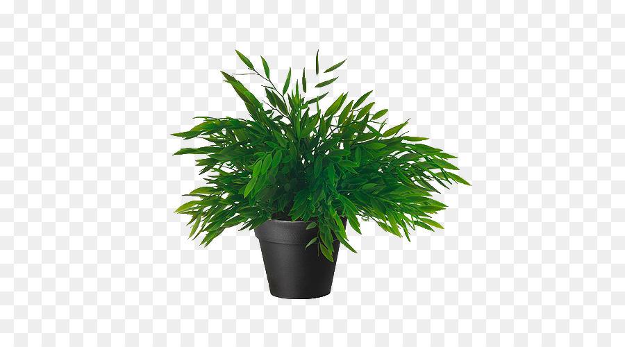 Bambus Amazon Com Kunstliche Blume Zimmerpflanze Anlage Png