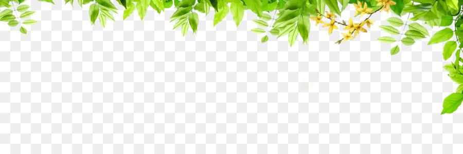 Graphic Design Green Pattern