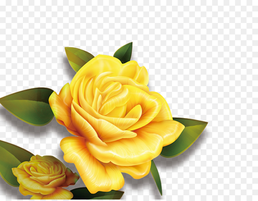 Rose, Yellow, Flower, Plant PNG
